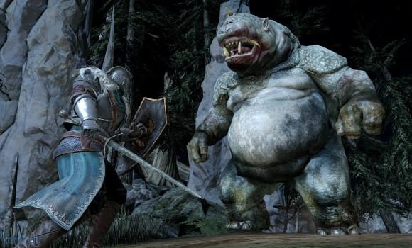Dark Souls 2 Ekran Görüntüleri - 9