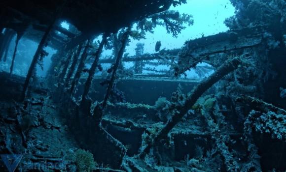 Deniz Kalıntıları Teması Ekran Görüntüleri - 2