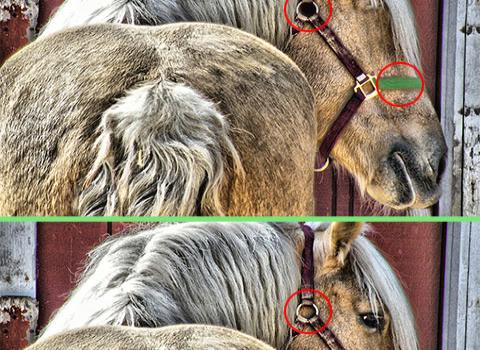 Find The Difference Ekran Görüntüleri - 3
