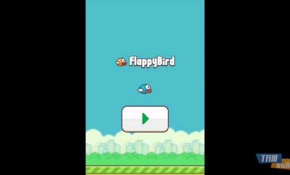 Flappy Bird 8 Ekran Görüntüleri - 3