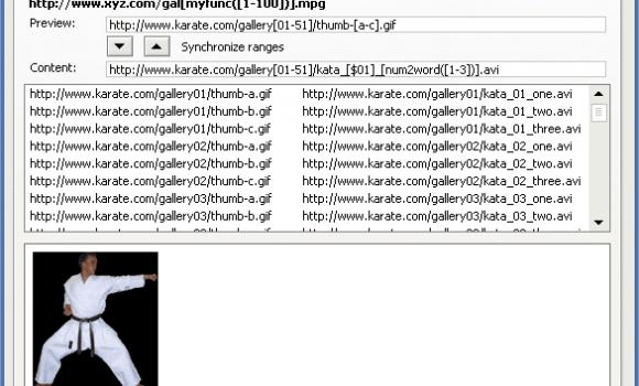 FlashGot Ekran Görüntüleri - 2