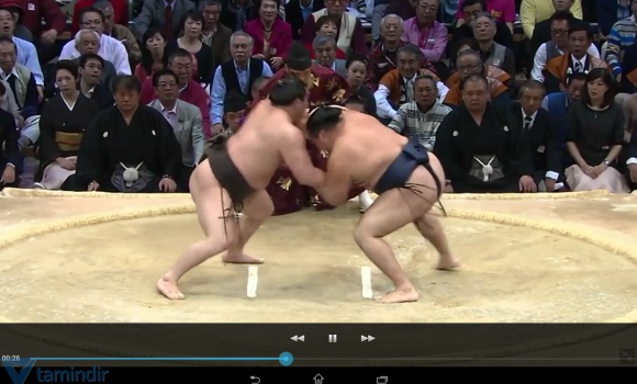 Grand Sumo Ekran Görüntüleri - 1