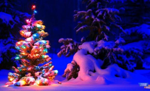Karlı Gece Teması Ekran Görüntüleri - 2
