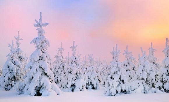 Kış Teması Ekran Görüntüleri - 3