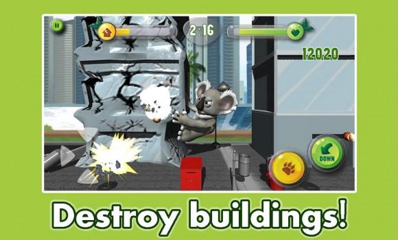 Koala Crush Ekran Görüntüleri - 2
