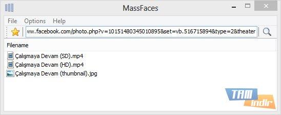 MassFaces Ekran Görüntüleri - 3
