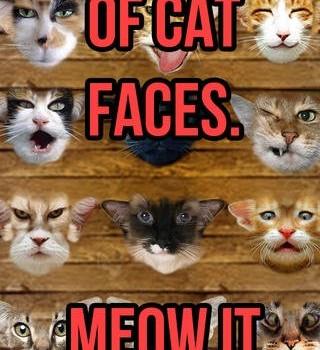 Meow Yourself Ekran Görüntüleri - 2