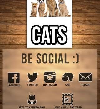 Meow Yourself Ekran Görüntüleri - 1