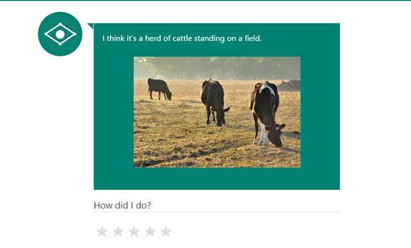 Microsoft CaptionBot Ekran Görüntüleri - 1
