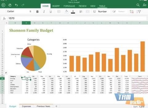 Microsoft Excel for iPad Ekran Görüntüleri - 5