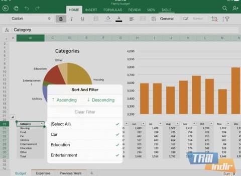 Microsoft Excel for iPad Ekran Görüntüleri - 2