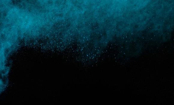 Nexus Marlin ve Sailfish Duvar Kağıtları Ekran Görüntüleri - 3