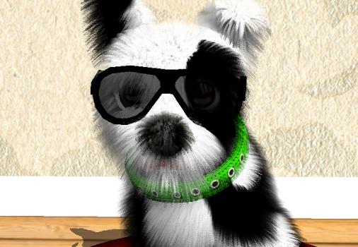 Oh My Dog Ekran Görüntüleri - 6
