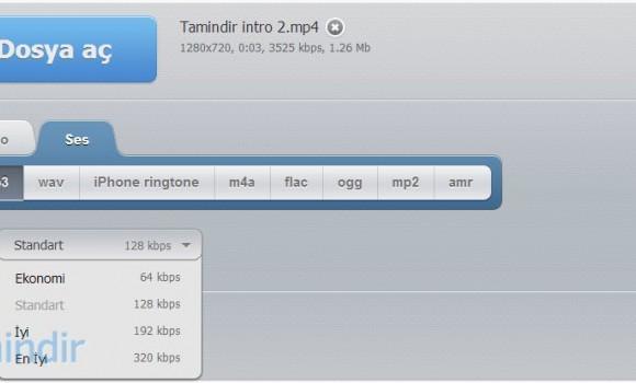 Online Video Dönüştürücü Ekran Görüntüleri - 2