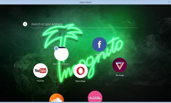 Opera Neon Ekran Görüntüleri - 1