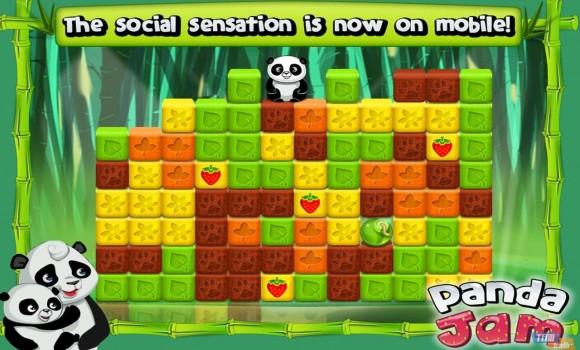 Panda Jam Ekran Görüntüleri - 5