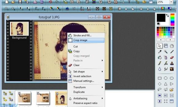 PhotoFiltre Ekran Görüntüleri - 2