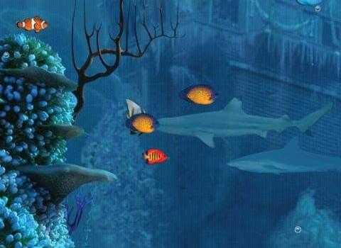 Shark Reef Live Wallpaper Free Ekran Görüntüleri - 1
