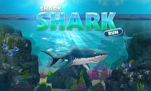 Shark Shark Run Ekran Görüntüleri - 3
