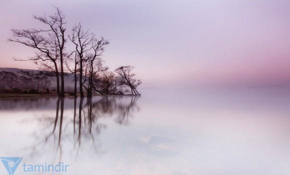 Sisli Sabah Teması Ekran Görüntüleri - 1
