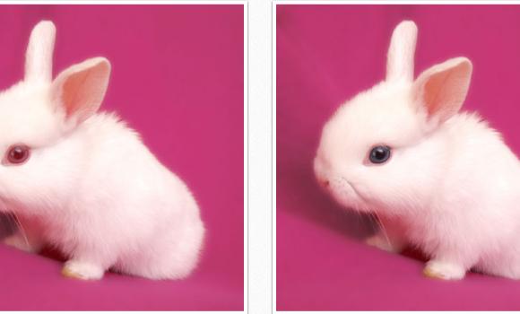 SoftSkin Photo Makeup Ekran Görüntüleri - 5