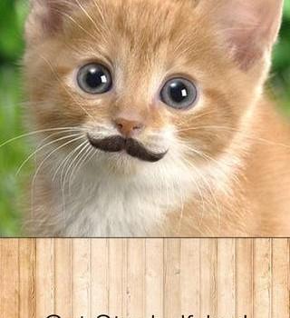 Stacheify - Grow a Mustache Ekran Görüntüleri - 1