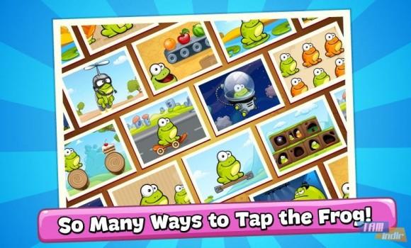Tap the Frog Ekran Görüntüleri - 1