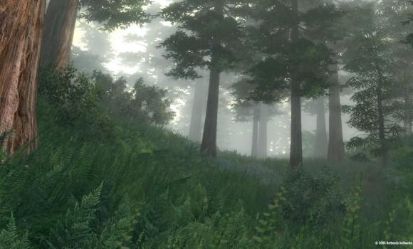 The Elder Scrolls IV: Oblivion Ekran Görüntüleri - 16