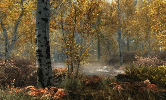 The Elder Scrolls V: Skyrim Special Edition Ekran Görüntüleri - 1