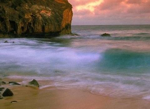Tropical Paradise Wallpapers Ekran Görüntüleri - 1