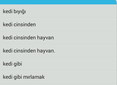 Türkçe-İngilizce Sözlük Ekran Görüntüleri - 6