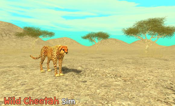 Wild Cheetah Sim 3D Ekran Görüntüleri - 6
