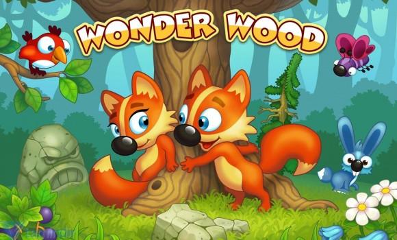 Wonder Wood Ekran Görüntüleri - 6