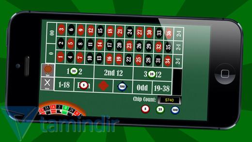 29-in-1 Casino Ekran Görüntüleri - 5