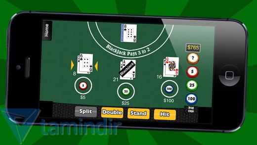 29-in-1 Casino Ekran Görüntüleri - 1