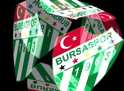 3D Bursaspor Live Wallpaper Ekran Görüntüleri - 3