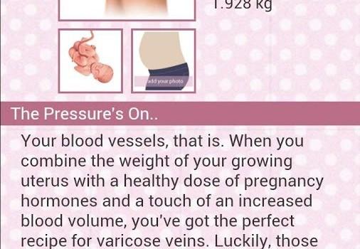 BabyBump Pregnancy Free Ekran Görüntüleri - 2