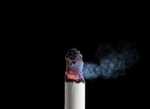 Cigarette Smoke (Free) Ekran Görüntüleri - 4