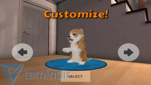 Dog Simulator Ekran Görüntüleri - 4