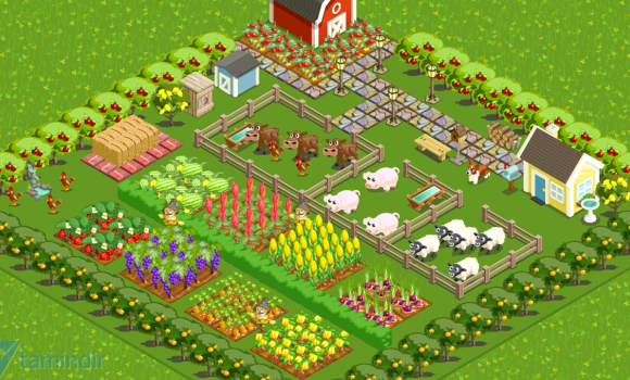 Farm Story Ekran Görüntüleri - 1