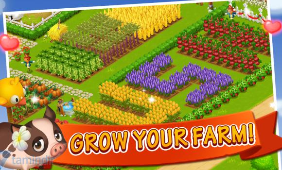 Happy Farm:Candy Day Ekran Görüntüleri - 2