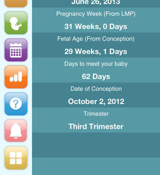 Happy Pregnancy Ticker Ekran Görüntüleri - 4