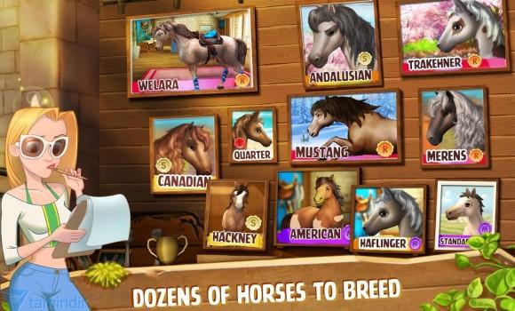 Horse Haven Ekran Görüntüleri - 3