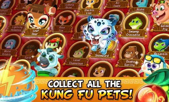 Kung Fu Pets Ekran Görüntüleri - 1