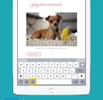 Adobe Slate Ekran Görüntüleri - 2