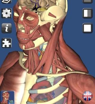 3D Anatomy Ekran Görüntüleri - 3