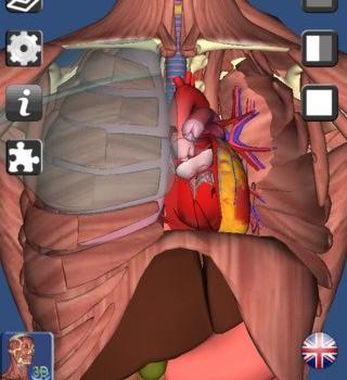3D Anatomy Ekran Görüntüleri - 2