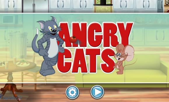 Angry Cats Ekran Görüntüleri - 2