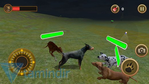 Dog Survival Simulator Ekran Görüntüleri - 4