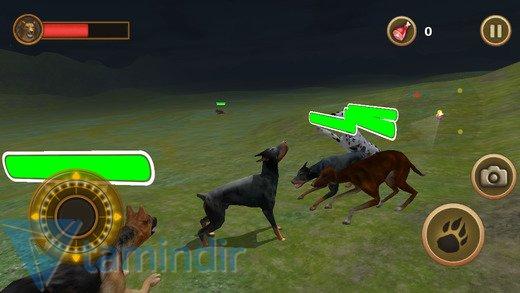 Dog Survival Simulator Ekran Görüntüleri - 3